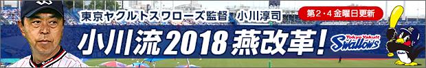 小川流2018燕改革!