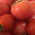 トマトマル