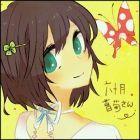 六十月菖菊