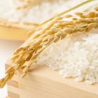 北海道の米